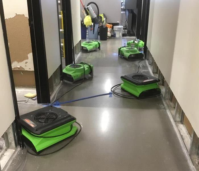 Hallway with five green air movers next to cut out baseboards.