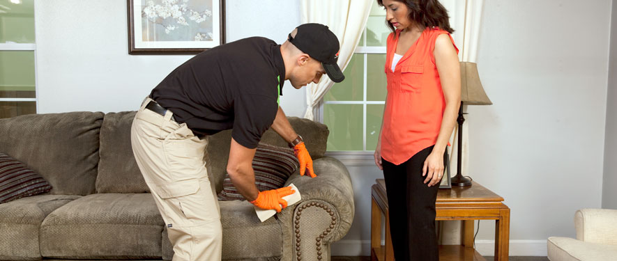 Tempe, AZ carpet upholstery cleaning