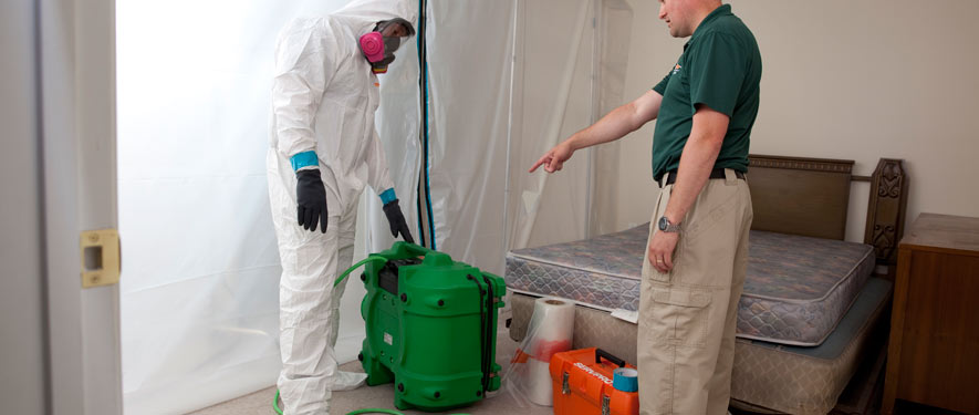 Tempe, AZ mold removal process